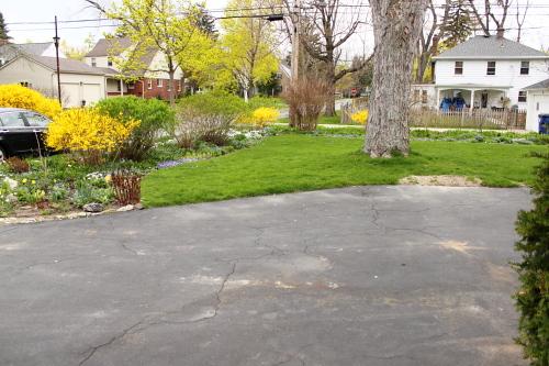Side Yard 2