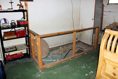 Basement Animal Pen?
