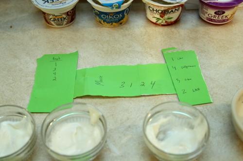 20121226_Yogurt_006