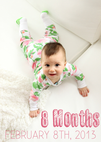 MiniB_8month_FAR