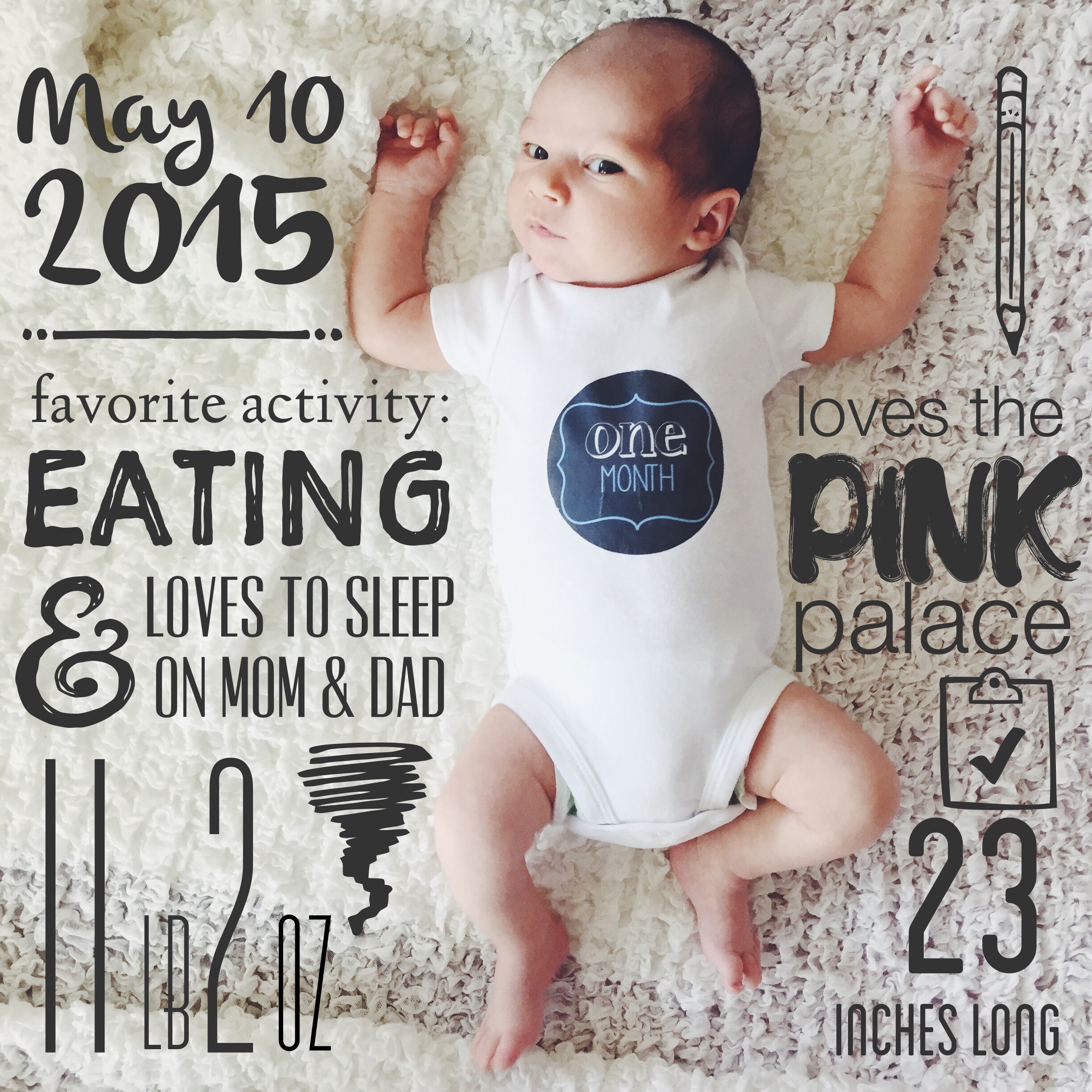 My goal was to capture a few details about the month along with a pic of  Baby B in his monthly onesie (thanks Auntie!). In case anyone is  interested, ...